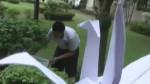 10573_150x84_44910fcf-1c23-d1f3-ef551c06c32975b5