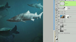 Create an Underwater Composition