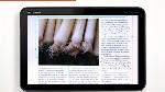 InDesign CS5.5およびAdobe Digital Publishing Suiteを使用したデジタルマガジンの制作
