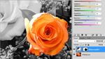 Photoshop CS5: Maskierte Bereiche in Schwarzweiß