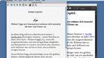 InDesign CS5.5 ePub: Verschiedene Formate – verschiedene Ansichten