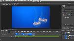 Utilisation des nouvelles fonctionnalités vidéo de PhotoshopCS6