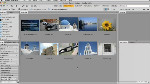 Applying Metadata Templates in Adobe Bridge