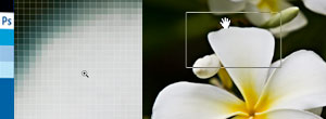 Photoshop CS4でのGPUアクセラレーション