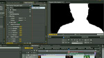 Premiere Pro CS5