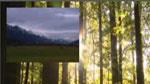 PC 04 : La fenêtre Montage