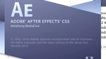 Partie 1 Les bases de l'animation et du compositing dans After Effects CS5