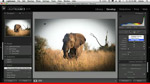 Lightroom 3 Public Beta 2: What's New?
