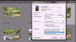 Importing photos from a digital camera