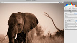 What's new for Photographers in Photoshop CS5
