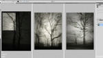PS - Creating a Triptych in Photoshop 
