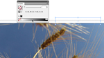 Einen virtuellen Klebestreifen in InDesign CS4 erstellen