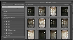 Import von der Speicherkarte in Lightroom 3