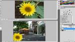 簡単な画像合成