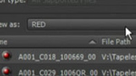 Editing with RED 1.7 Technical Overview