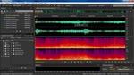 Comparer un fichier audio et une session multi-séquence