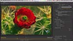 What's New in Adobe Media Encoder CC - NAB 2014