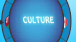 Culture - Summit 2011