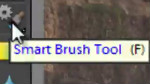 Enhance specific areas with Smart Brush