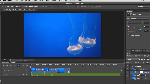 Using the New Video Features in Photoshop CS6