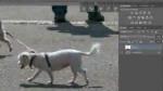 Inhaltsbasiertes Verschieben und Ausbessern mit Photoshop CS6