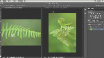 Quick Tip  Cropping Two Images to the Same Size in Photoshop CS6